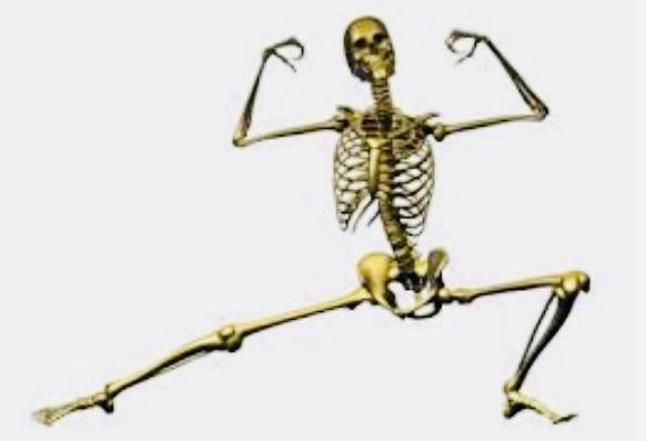 Lo Stress e le ossa: quale legame?